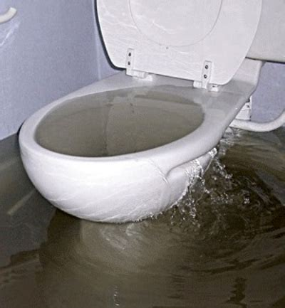 5 Ways to Avoid Sewer Line Backup
