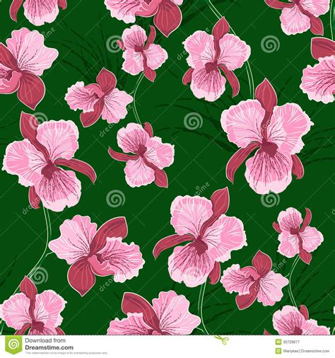 orchid pattern vector seamless pattern with orchid royalty free stock
