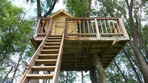 best treehouses the best trees for building treehouses sara thompson
