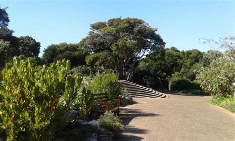 botanical gardens ct best places to enjoy in cape town and surrounds