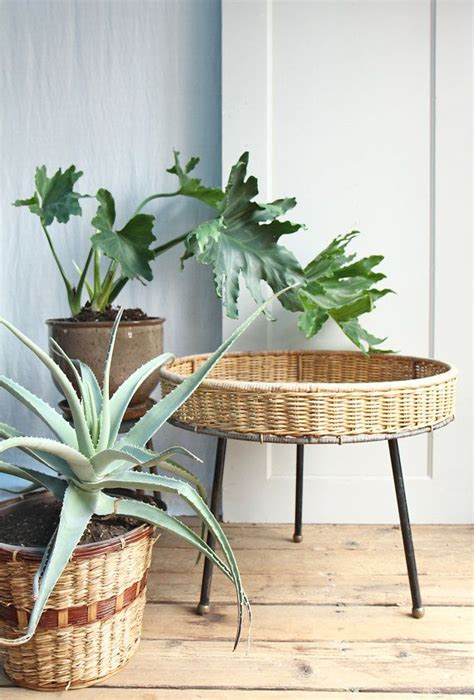 Planter Table Indoor by Best 25 Indoor Plant Stands Ideas On Indoor