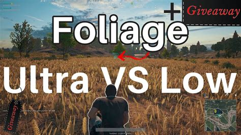 Pubg Giveaway - foliage low vs ultra will it make a difference pubg giveaway youtube