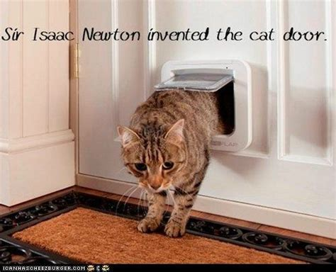 Who Invented The Cat Door by Sir Isaac Newton Invented The Cat Door Http Cheezburger