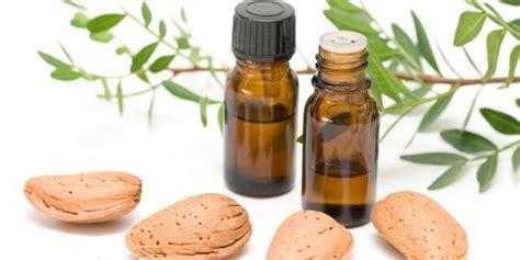 Minyak Esensial Untuk Rambut minyak kayu putih obat untuk rambut rontok holtikulturaku