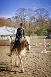 donna bionda con il cavallo immagine stock immagine donna bionda che monta cavallo nero fotografia stock
