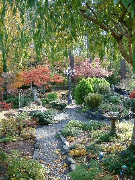 6 cherry tree gardens ramsgate garden a weeping cherry tree garden ideas gardens cherry