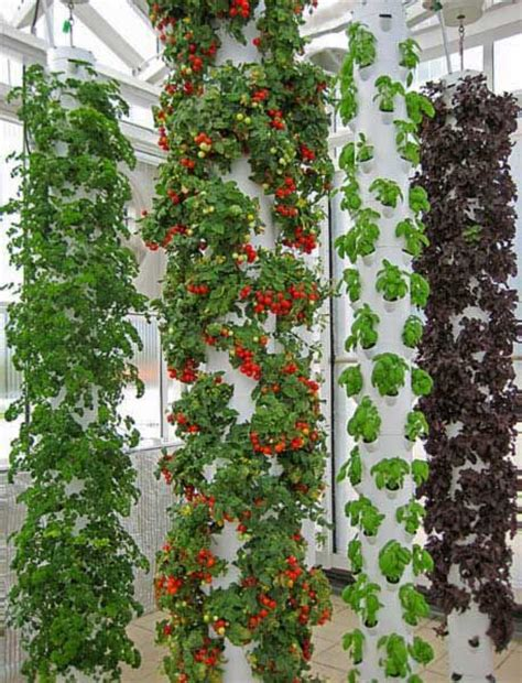 Vertical Hydroponic Gardening I Want To Try This With Our Set Up Vertical Gardens