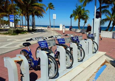 park fort lauderdale rental bicycles picture of fort lauderdale park fort lauderdale tripadvisor