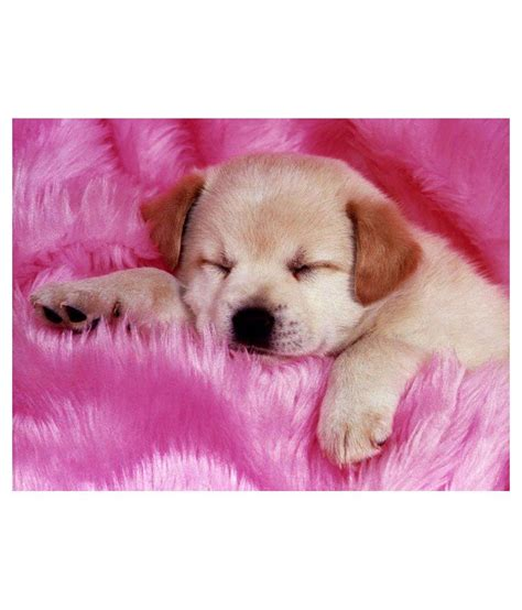 puppy wall stickers printhike baby puppy wall sticker buy printhike baby