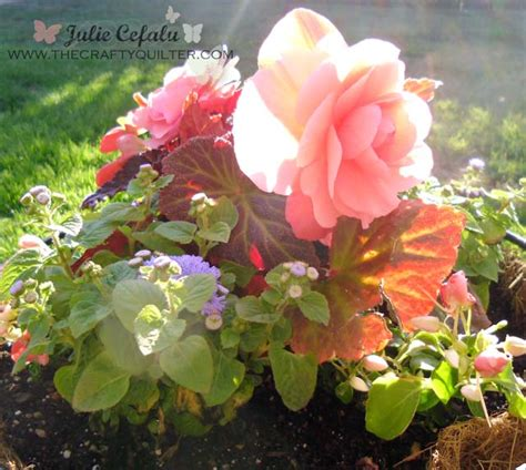begonia color where to find color inspiration the crafty quilter