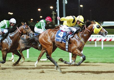 emirates racing interest on traditional sports soaring in uae