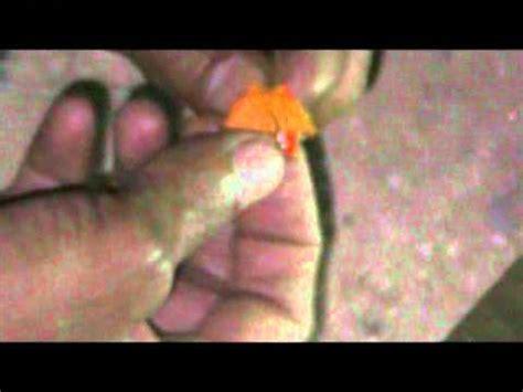 cara membuat ongol2 by wongcerbon fishyforum youtube racikan umpan lomba harian mancing ikan mas jatiwangi