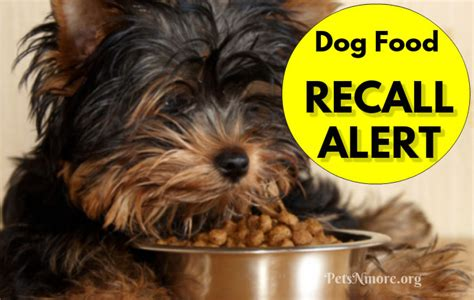 recalled dogs pets n more recall alert 19 varieties of food are on the list