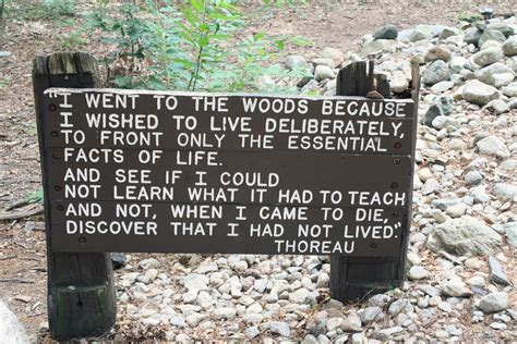 pond quotes on walden pond quotes quotesgram