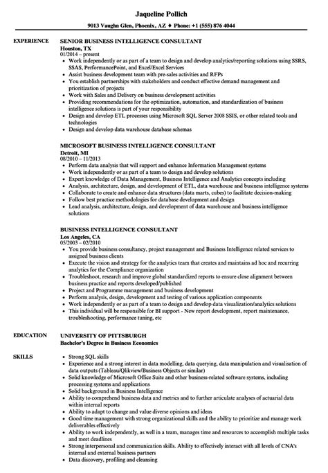 Sharepoint Consultant Resume by Sharepoint Consultant Sle Resume Government Appraiser