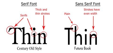 typography vs font sans serif