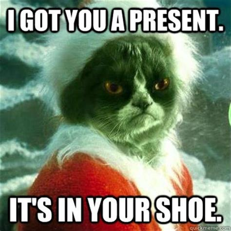 grumpy cat got you a present grinch dump a day
