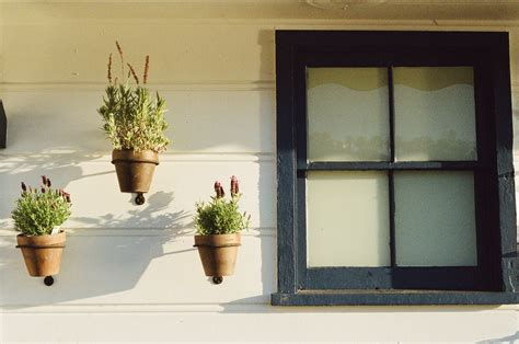 window of house photos flowerpots house window 183 free photo