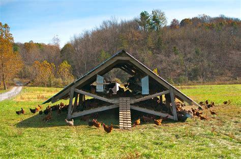 Free Barn Plans chicken coops that work 5 brilliant ways abundant