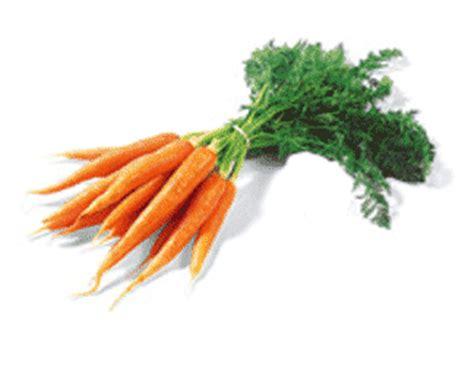 dove portare i bambini a torino dove si comprano le carote col ciuffo articoli