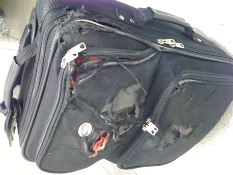 baggage laid out at airline luggage counter after flight what to do about your lost luggage trackimo