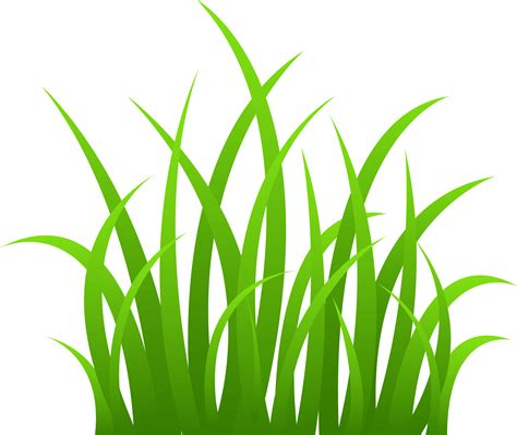 grass pattern png grass clipart gress pencil and in color grass clipart gress