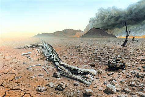 the mass extinction that might never have happened new