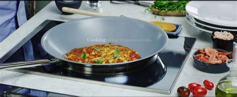 induction cooking recipes chicken electrolux grand cuisine the surround induction zone