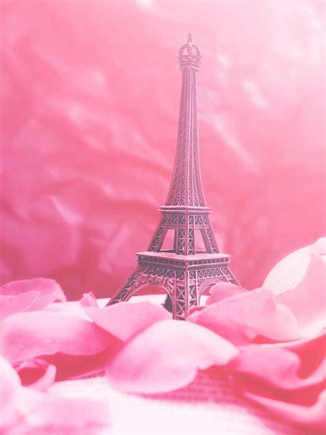 wallpaper pink paris pip paris in pink by redanshy on deviantart