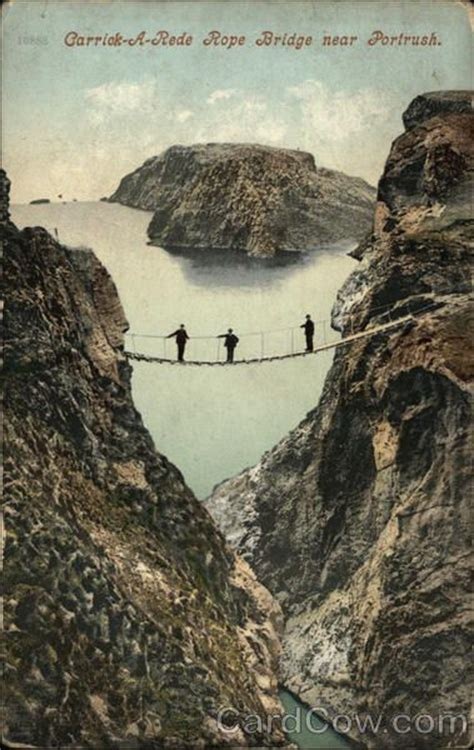 swing 4 ire 1000 images about swing and rope bridges on pinterest