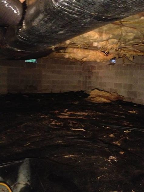 crawl space with dirt floor