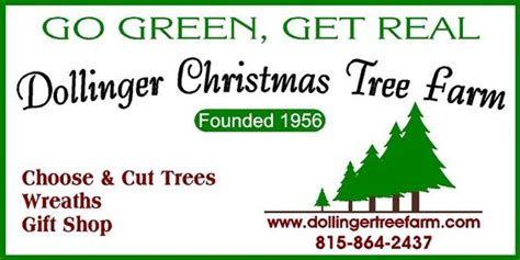 choose and cut trees in illinois the world s catalog of ideas