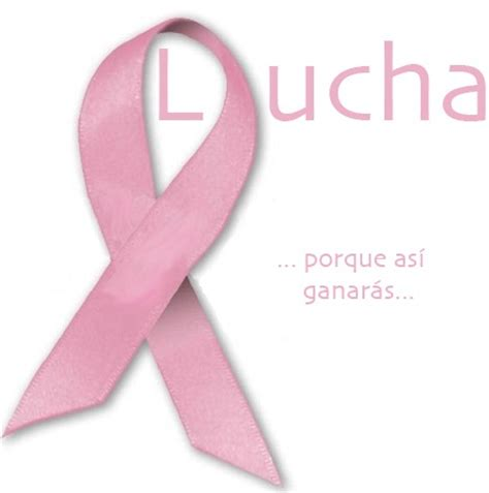 imagenes para wasap lazo rosa mo 241 os rosa c 225 ncer de mama para whatsapp im 225 genes para
