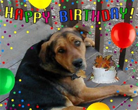 Happy Birthday Clip With Dogs Free by Free Graphics Cat Graphics Images Free Photo