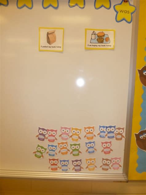themes in the book hoot 66 best kindergarten owls images on pinterest classroom