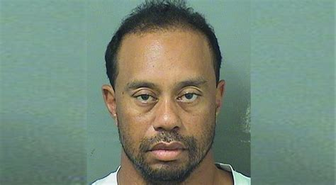 Tiger Woods Memes - tiger woods arrested