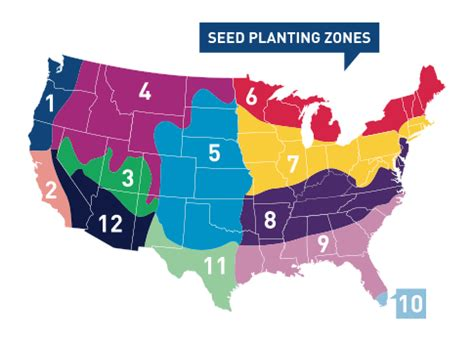 gardening zone by zip code seed calculator