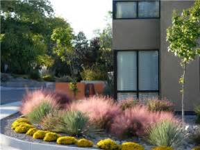 southwest garden design landscaping network