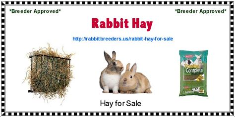 rabbit tattoo pen for sale top rabbit breeding hutches images for pinterest tattoos