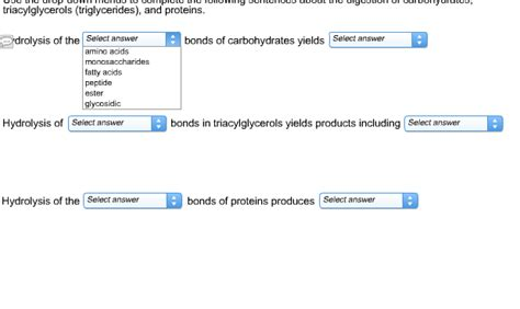 carbohydrates used in a sentence solved use the drop menus to complete the following