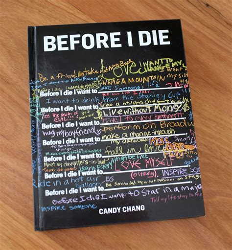the before a novel books book review before i die zinc moon