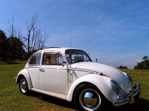 vintage volkswagen volkswagen vintage beetle whiteweddingcars