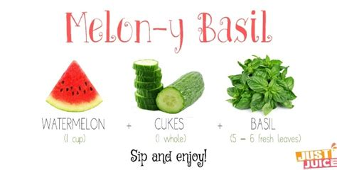 Juicer 7 In 1 benefits of basil juice for acne and inflammation basil