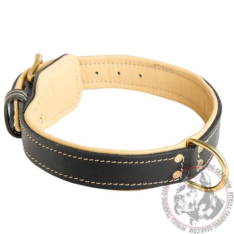 Leather Pit Order Handmade Nappa Padded Leather Pitbull Collar