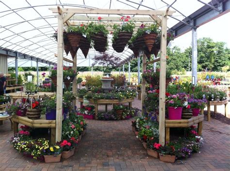 Garden Centre Ideas Hanging Baskets Displayed On A Pergola At Dunbar Garden Centre Plants Gardens