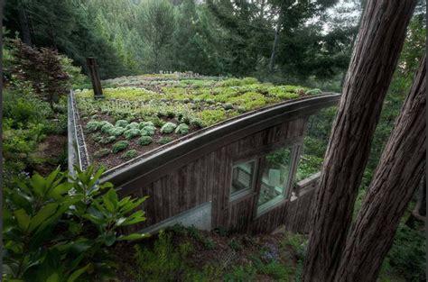 cabin design  feldman architecture san francisco green