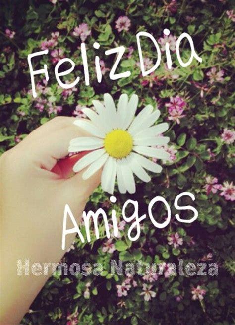 imagenes de rosas blancas para facebook feliz dia amigos facebook com hermosanaturaleza2