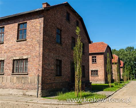 best auschwitz tour krakow city tours auschwitz wieliczka tours