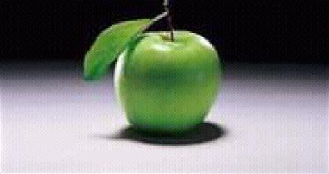 Delima Mesir buah buahan mesir suteraungu87