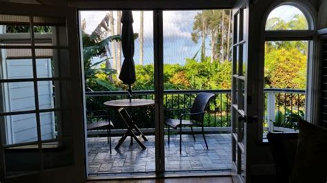 orchid tree bed and breakfast orchid tree bed and breakfast updated 2017 prices b b
